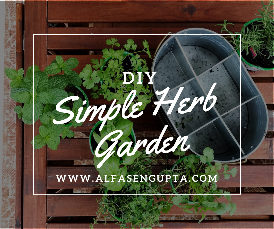 DIY Simple Herb Garden