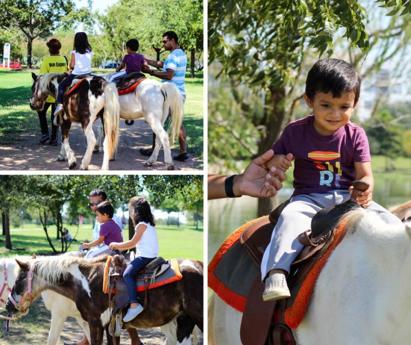 Mueller Farmers Market, Austin, Family, Kids, Toddlers, Horses